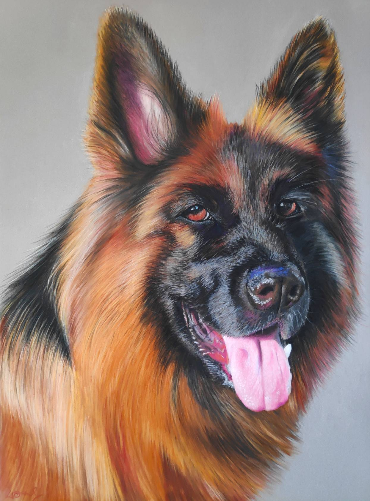 GermanShepard